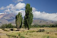 TRANQUERA, RUTA 89 CAMINO A POTRERILLOS, LA CARRERA, TUPUNGATO, PROVINCIA DE MENDOZA, ARGENTINA