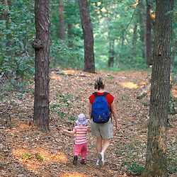 Harwich, MA.A woman and her daughter walk a trail in the oak-pine forest near the Monomoy River (a.k.a. Muddy Creek) in Harwich on Cape Cod.