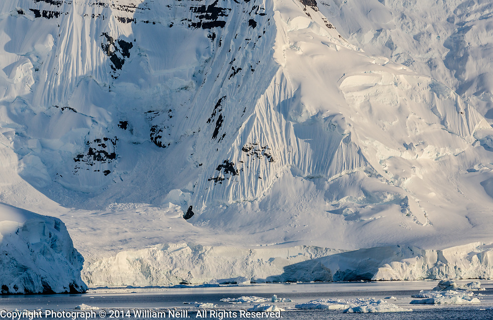 Cliffs and Glaciers at Sunrise, Neumayer Channel, Antarctic Peninsula, Antarctica  2014