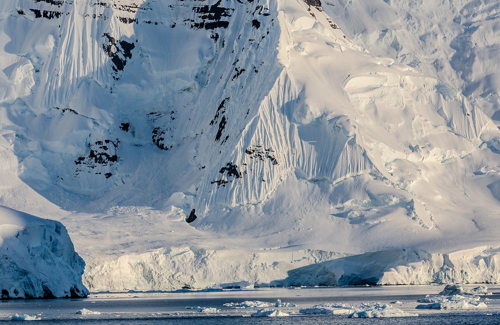 Cliffs and Glaciers at Sunrise, Neumayer Channel, Antarctic Peninsula, Antarctica  2014