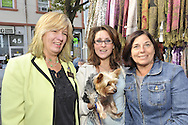 OCTOBER 22, 2011 - MERRICK, NEW YORK: Democratic candidate meets people at Merrick Street Fair. Merokean Claudia Borecky (lime green jacket) challenged Republican incumbent for Town of Hempstead Town Council.