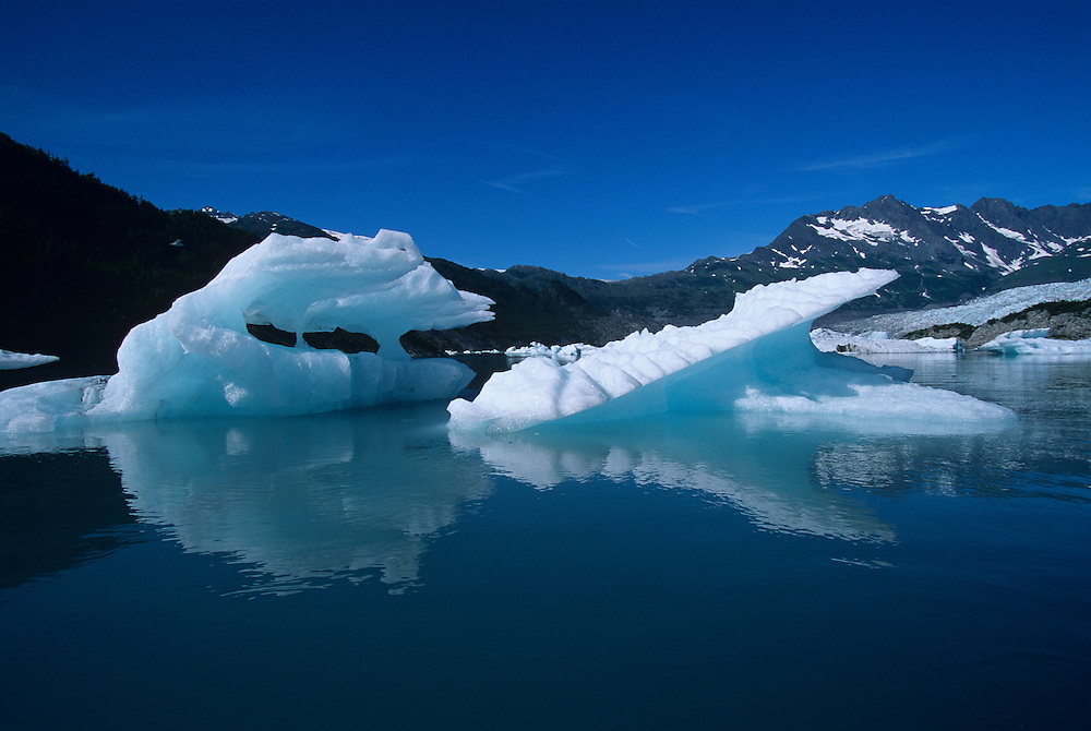 USA, Alaska, Icebergs float in Prince William Sound near calving face of Shoup Glacier near town of Valdez