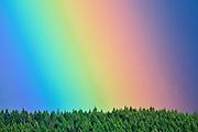 Rainbow detail over forest<br /> Port Alberni<br /> British Columbia<br /> Canada<br /> Port Alberni<br /> British Columbia<br /> Canada