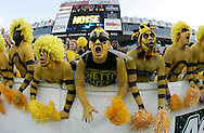 ATLANTA,GA:  Georgia Tech  Goldfellas scream to help the  Georgia Tech defense against Clemson University . This group of student fans paint their bodies yellow and black and wear yellow wigs.   The tradition started in 1998 at the homecoming game against Virginia.  The messages they write on their bodies  is determined by how many  students show up two hours before game time.    ©2005 Johnny Crawford