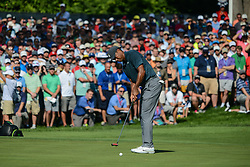 August 9, 2018 - Town And Country, Missouri, U.S - The crowd gathers to watch TIGER WOODS from Jupiter Florida, USA putt on the 14th green during round one of the 100th PGA Championship on Thursday, August 8, 2018, held at Bellerive Country Club in Town and Country, MO (Photo credit Richard Ulreich / ZUMA Press) (Credit Image: © Richard Ulreich via ZUMA Wire)