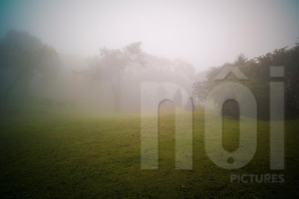 Ba Vi National Park during a foggy day, Vietnam, Southeast Asia