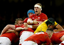 Alun Wyn Jones of Wales makes an enquiry<br /> <br /> Photographer Simon King/Replay Images<br /> <br /> Under Armour Series - Wales v Australia - Saturday 10th November 2018 - Principality Stadium - Cardiff<br /> <br /> World Copyright © Replay Images . All rights reserved. info@replayimages.co.uk - http://replayimages.co.uk
