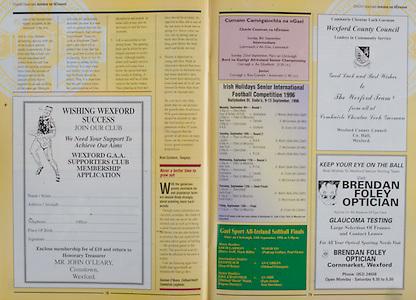 All Ireland Senior Hurling Championship - Final,.01.09.1996, 09.01.1996, 1st September 1996,.01091996AISHCF, .Wexford v Limerick,.Wexford 1-13, Limerick 0-14,..Wexford County Council, Brendan Foley Optician,