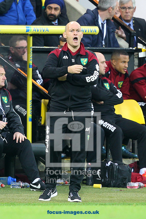 Norwich Manager Alex Neil during the Barclays Premier League match at Carrow Road, Norwich<br /> Picture by Paul Chesterton/Focus Images Ltd +44 7904 640267<br /> 24/10/2015