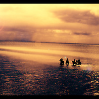 Four people riding horses at sunset on a beach