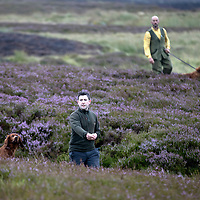 FREE TO USE PHOTOGRAPH…11.08.17<br />