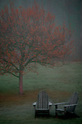 Adirondack Chairs in Fall Fog
