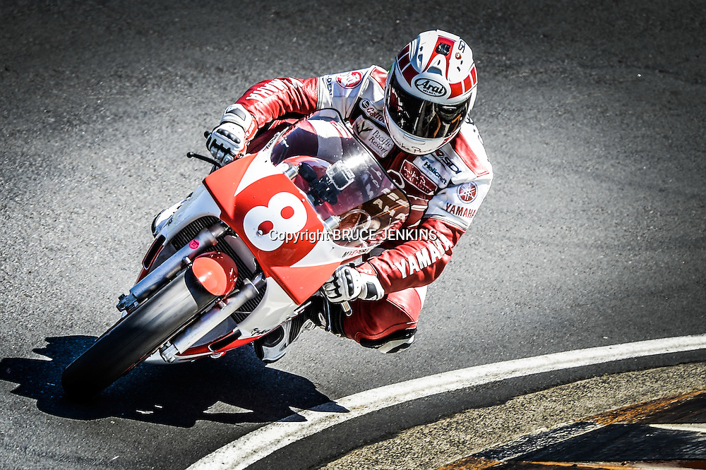 Mike Pero racing his Yamaha TZ 250 at the 2014 Barry Sheene Festival of Speed at Hampton Downs, New Zealand