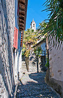 Palms in a stony alley with church tower in Auressio in the Valle Onsernone in Ticino, Southern Switzerland.