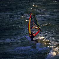 WINDSURF <br />PHOTO : THIERRY SERAY/DPPI