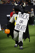 The Houston Texans mascot in action during the NFL week 8 regular season football game against the Miami Dolphins on Thursday, Oct. 25, 2018 in Houston. The Texans won the game 42-23. (©Paul Anthony Spinelli)