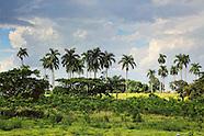West of Cabaiguan, Sancti Spiritus, Cuba.