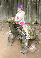 May 26, 2012: Oklahoma City Zoo