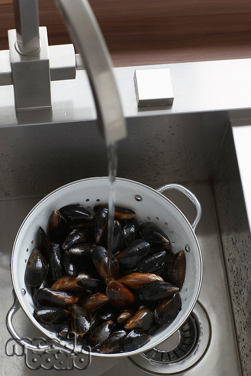 Mussels in kitchen sink elevated view close-up