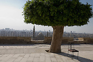 Egypt. Cairo : the islamic city view from  the citadel of Mohammad Ali  Cairo +
