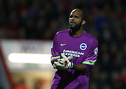 Ali Al-Habsi on his debut during the Sky Bet Championship match between Bournemouth and Brighton and Hove Albion at the Goldsands Stadium, Bournemouth, England on 1 November 2014.
