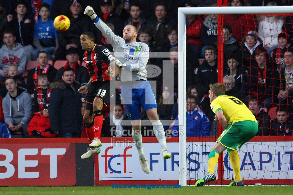 John Ruddy of Norwich punches clear during the match at the Goldsands Stadium, Bournemouth<br /> Picture by Paul Chesterton/Focus Images Ltd +44 7904 640267<br /> 10/01/2015