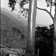 CARA-cas.Photography by Aaron Sosa.Caracas - Venezuela 2004.(Copyright © Aaron Sosa)