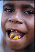 Martinus Himan, a Dani child with a mouthful of roasted stink bugs, Soroba Village, Baliem Valley, Irian Jaya, Indonesia. (page 7 Bottom Right. See also page 79)