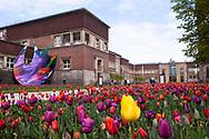 Europa, Deutschland, Duesseldorf, Museum Kunstpalast, Ehrenhof, links das Kunstwerk Ellipse von Katharina Grosse.<br /><br />Europe, Germany, Duesseldorf, museum Kunstpalast, Ehrenhof, on the left the artwork Ellipse by Katharina Grosse.