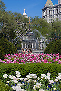 New York City: Summer in City Hall Park