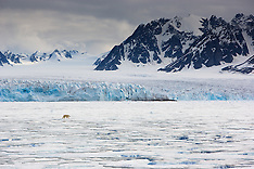 Svalbard #2 2006