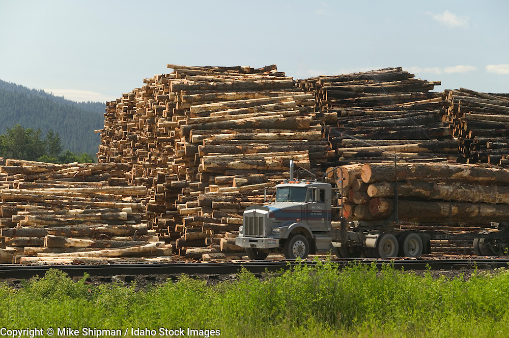 Riley Creek Lumber Company, log piles and log truck hauling logs, Laclede, Idaho, Bonner County, USA