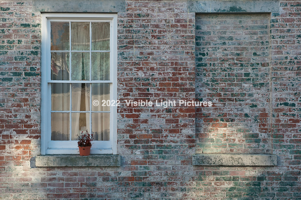 Two windows and a flower pot on a brick building in a alley.