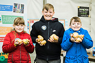 Branston Potatoes at Fife Show 2017