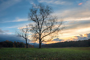 Cades Cove, Great Smoky Mountains National Park, TN.<br /> It's autumn at sunset in Cades Cove.  Most times I've been here, dusk fades slowly, the green bowl of the valley seeming to be reluctant to give up the light and let the shadows of the mountains that surround overwhelm it.  It was a place of farmers, homestead families, far from neighboring towns, who managed a subsistence life until the park was formed and they were moved out. The cabins, barns and churches still stand as a testimony to civilized remoteness.  Family, neighbors, and church were nearly all they had out there 80 some-odd years ago, a simpler way of life.  And so it's not hard for me to conjure an image of a father and son coming out to this little rise from the preserved cabin somewhere behind me, to stand in the last glow of day, an unintended ritual. Maybe it's the trees that fuel my visualization, standing like a memory this many years later, their faces facing the light,  bathed in gold.  There is a confirmation that another day is done, that life is steady, in a sunset...even if it's not true. Fathers and sons part, one way or another, eventually.  I remember my father this way...me so small and him so big next to me.  Bigger than life, and eternal.  It's the memory I prefer, not the reality of our grown up statures in later years.  The imaginary observer, I watch until the color fades and the sky darkens, and then leave, like they all had to.