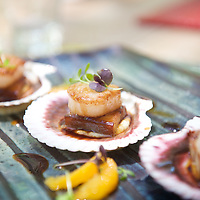 Scallops and pork belly at luxurious Molori, Port Douglas, Queensland, Australia