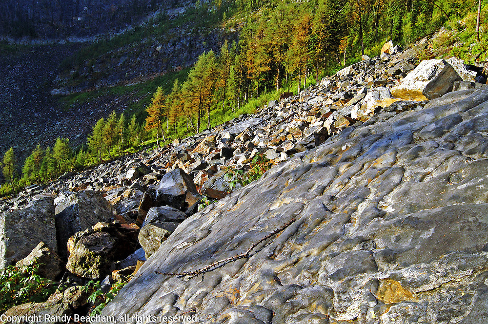Talus slope and alpine larch above Lower Hawkins Lake in the Northwest Peak Scenic Area. Purcell Mountains, Montana