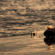 Sacred butter lamps burn on the shores of the Ganges River at Triveni Ghat, Rishikesh, India.