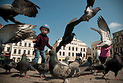 A child chasing pigeons in the main square, Cieszyn, Silesia, Poland. April 2009.