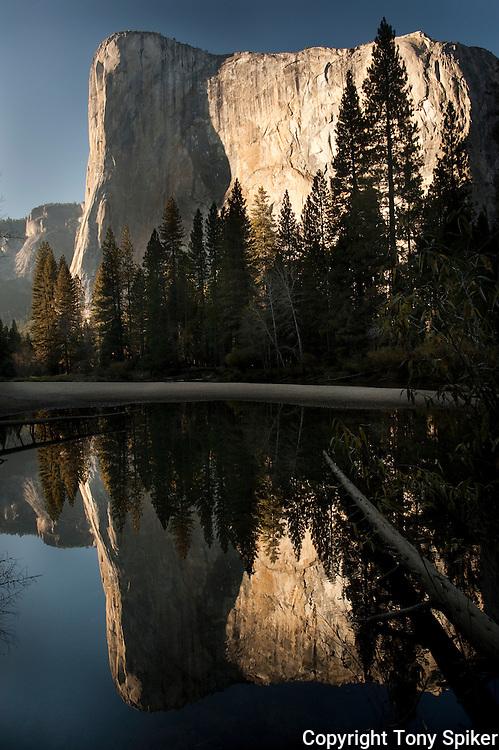 """El Capitan Reflections"" - El Capitan, is reflected in the Merced River in Yosemite Valley,"