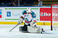 KELOWNA, CANADA - NOVEMBER 11: James Porter #1 of the Kelowna Rockets warms up in net against the Red Deer Rebels on November 11, 2017 at Prospera Place in Kelowna, British Columbia, Canada.  (Photo by Marissa Baecker/Shoot the Breeze)  *** Local Caption ***