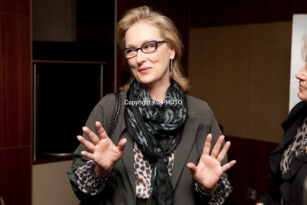 "Actress Meryl Streep attends a reception at Zola restaurant before a screening of her upcoming movie ""The Iron Lady,"" on November 29, 2011 in Washington DC. Photo by Graeme Jennings/KC PHOTO"