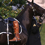 A riderless horse is walked along the funeral route Wednesday, June 9, 2004, in Washington, DC.  The boots are Reagan's personal boots...Photo by Khue Bui