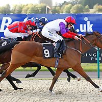 Close Together and Paul Hanagan winning the 2.30 race