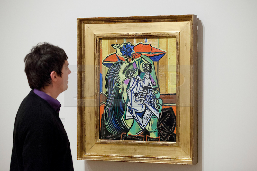 © Licensed to London News Pictures. 13/02/2012. LONDON, UK. A member of gallery staff looks at Pablo Picasso's 'Weeping Woman' at a Tate Britain exhibition exploring the artist's lifelong connections with Britain. The exhibition, called 'Picasso and Modern British Art', starts at the Tate Britain on the 15th of February 2012. Photo credit: Matt Cetti-Roberts/LNP