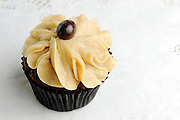 Ganache Cupcakes on Thursday, March 18, 2010. Photo By Tom Turner