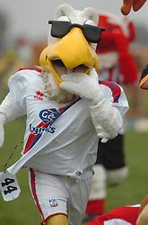 PETE THE EAGLE (CRYSTAL PALACE), John Smiths Mascot Grand National, Huntingdon Racecourse Sunday 5th October 2008