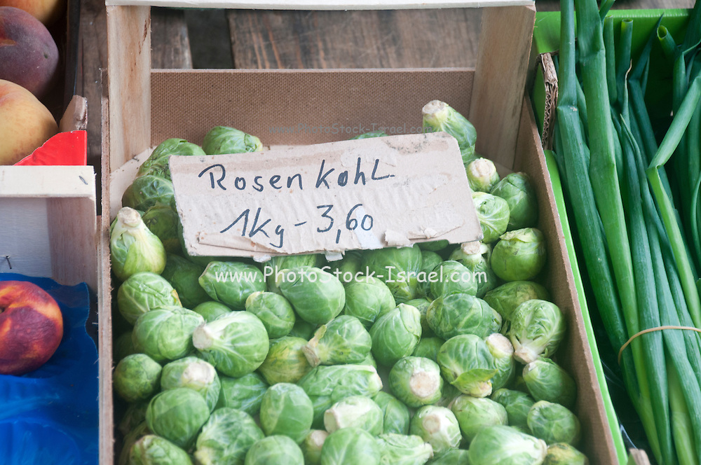 Rosenkohl - Brussels sprout at a farmer's market in Passau, Germany