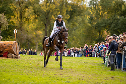 Klimke Ingrid, GER, Equistros Siena Just Do It<br /> Mondial du Lion - Le Lion d'Angers 2019<br /> © Hippo Foto - Dirk Caremans<br />  19/10/2019