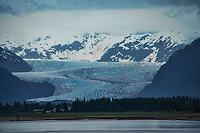Mendenhall Glacier from Fritz Cove